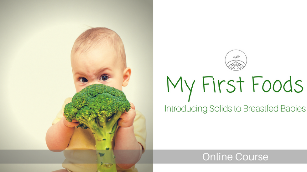 My First Foods - Introducing Solid Foods to Breastfed Babies