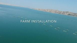 Balık Çiftliği Kurulumu