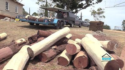 Steel v Wooden Stumps