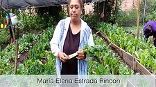 Testimonio 22 aniv Maria Elena  san juanito
