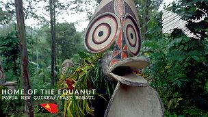 The Home of Equanut- Papua New Guinea