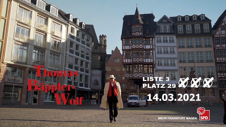 Thomas Bäppler-Wolf, Wahlen