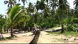 Samana Karibik