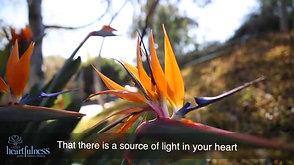 Heartfulness Guided Meditation