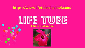 Life Tube Channel ad