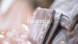 Hammitt Trunk Sale