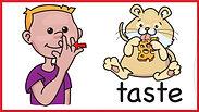 sign-language-animation