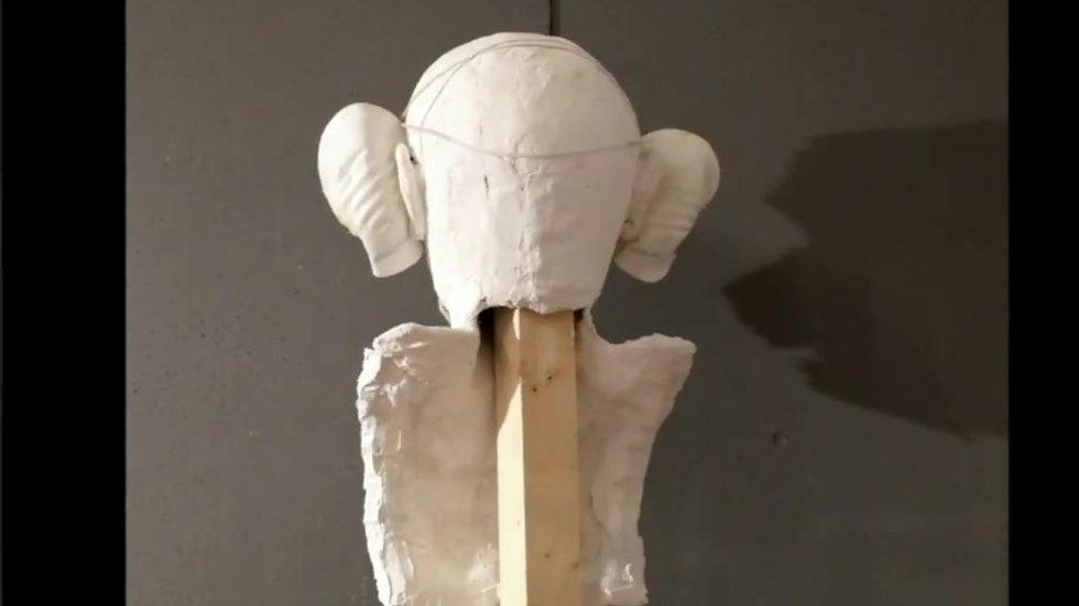 MAX covid Mask corona Masque