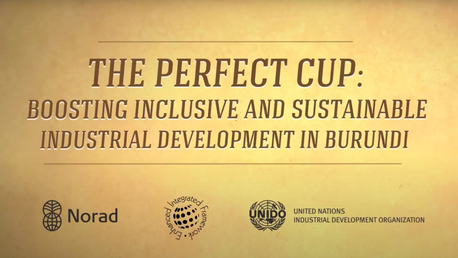 United Nations THE PREFECT CUP editing
