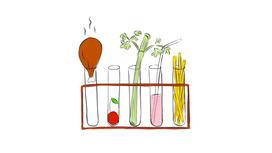 Serge Benhayon on Food | Part 1