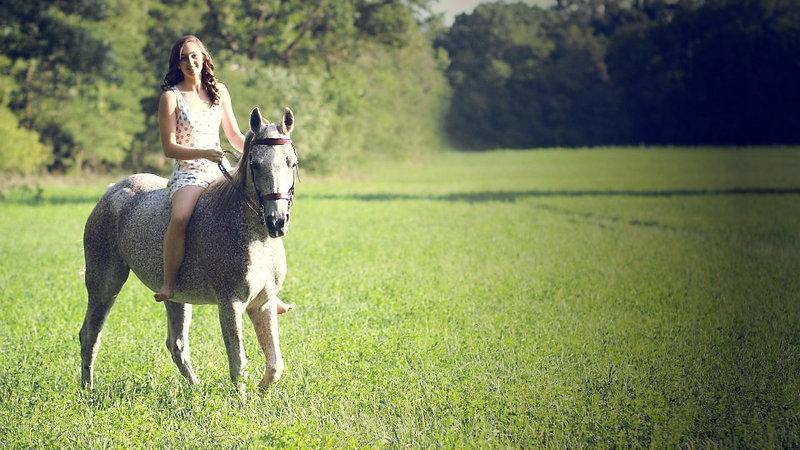 Horseback Riding Reel