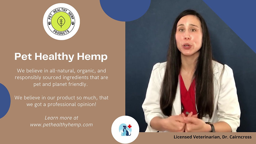 Pet Healthy Hemp Video
