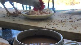 Coffee at the Chicken Bar
