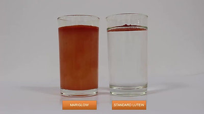 Mariglow®,  a water dispersible Lutein formulation developed by Olene Life Sciences (1)