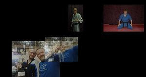 Mr. Shawn Green Slideshow