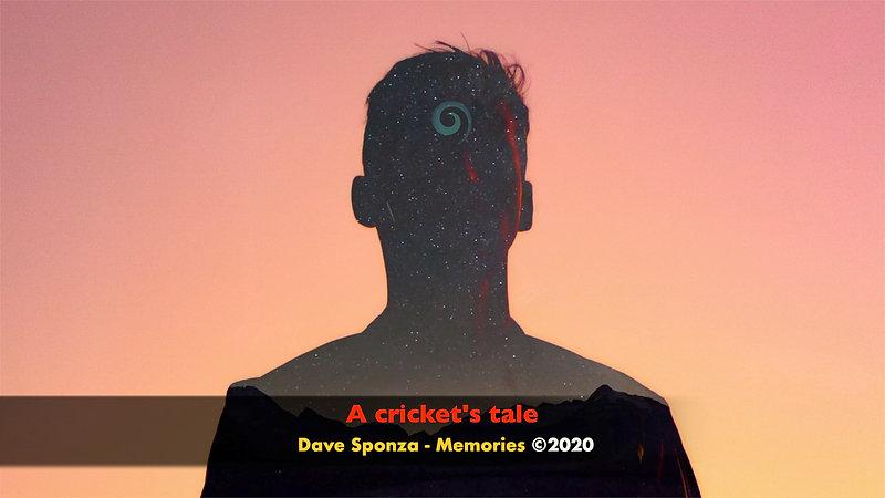 A Cricket's Tale