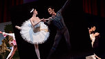 How to Sauté - Sawyer and Kylie visit the Houston Ballet