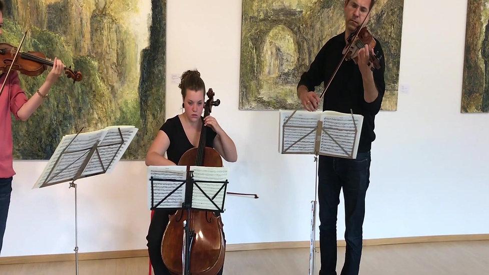 FLKT Michael Franke - Concerto con il Borea Barockorchester