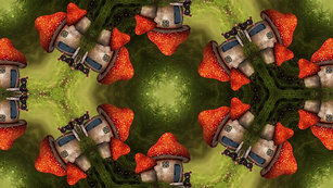Toadstool Kaleidoscope $8