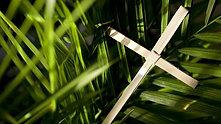 Palm Sunday Worship: 3/28/21