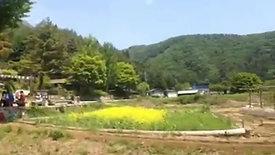 Nida Mailo - บ้านโบราณ - ฟูจิซัง - ญี่ปุ่น
