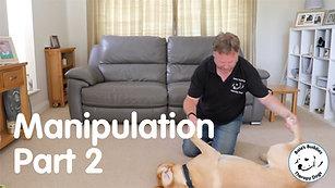 Manipulation - Part 2