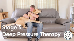 Deep Pressure Therapy  - Stage 5