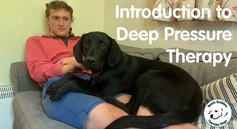 Introduction to Deep Pressure Therapy