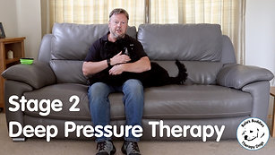 Deep Pressure Therapy - Stage 2