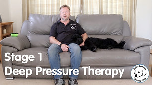 Deep Pressure Therapy - Stage 1