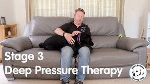 Deep Pressure Therapy - Stage 3