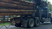 Log Truck out with a load to the mill!