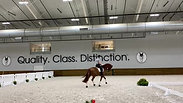 Five Star's First Visit to the World Equestrian Center