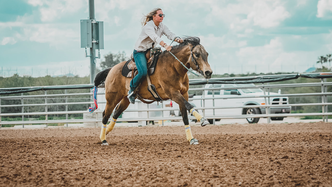 """Sc Laced In Charm """"Lacey"""" Barrel Racing Videos"""