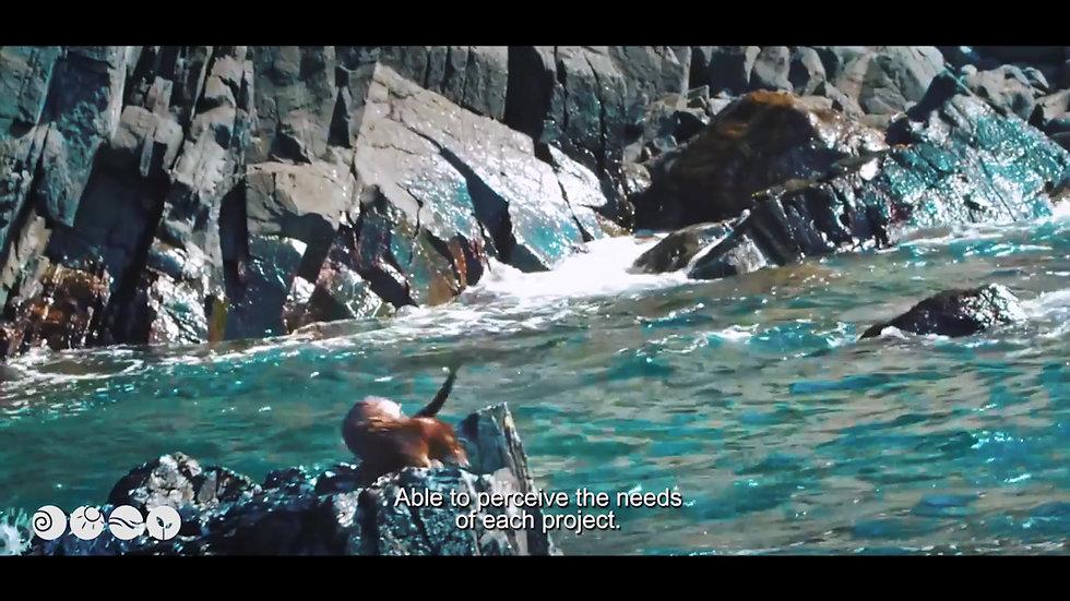 Video Corporativo GeaAmbiental