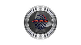 Auburn University Wheelchair Basketball Workout