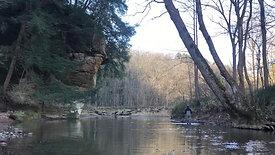 Took a walk up a creek today
