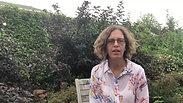 TK testimonial Gordana Kalenko