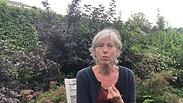 TK testimonial Kathleen Nobus
