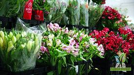 Jacksonville Flower Market