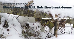 Raw meal plans