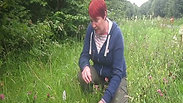 wildWitch foraging