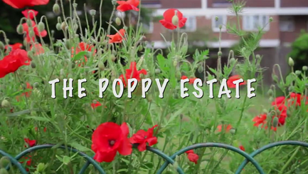 The Poppy Estate