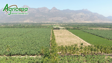 Agricasa spot 2