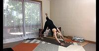 Sarah Alt   Yogic Strength   1 of 6