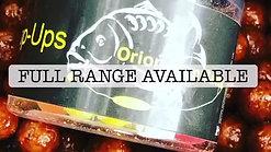 Orion promo 2