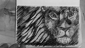 Pen Drawing lion