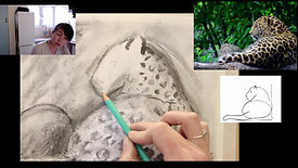 jaguar drawing in charcoal