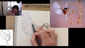 colourpencil bird