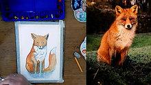 watercolour fox timelapse